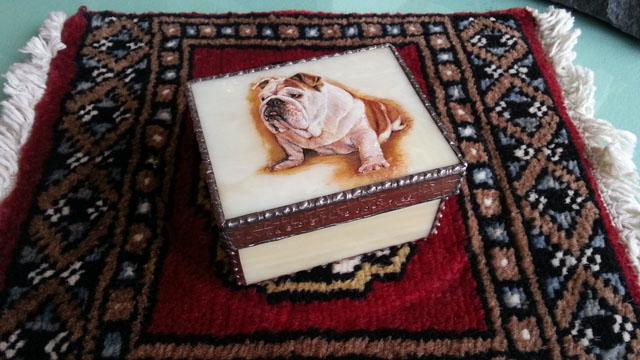 E.Bull.Box.KAEDE_20121222_125709