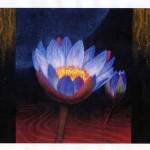 エナメル絵付けのワークショップ・花のステンドグラス 小パネル 原画